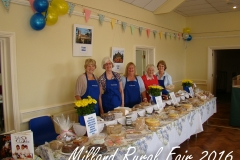 Milland Rural Fair 2016