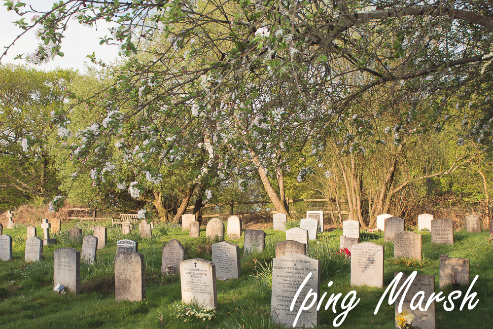 Iping Marsh